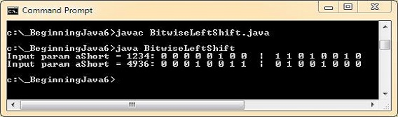 run bitwise left shift