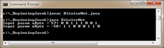 run bitwise not